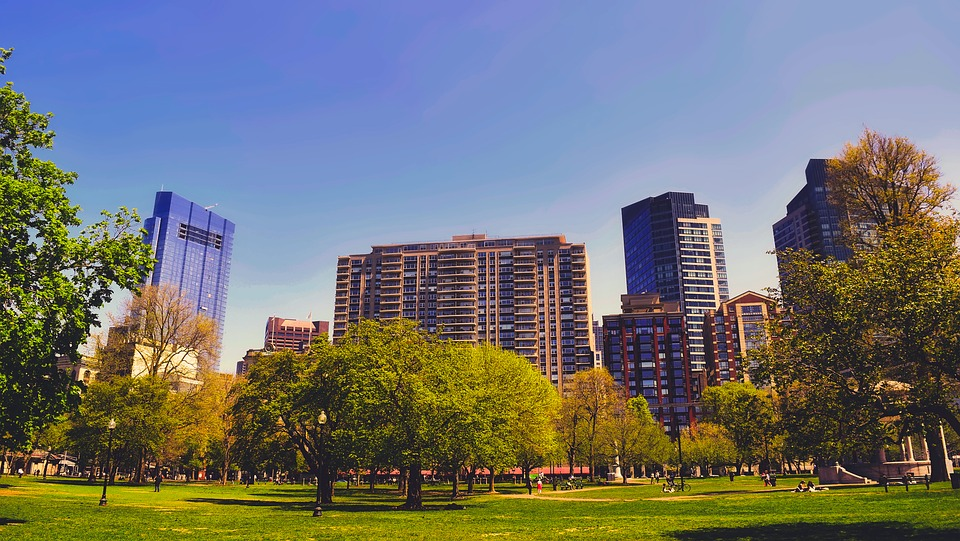 this image shows boston Massachusetts  park